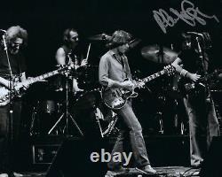 GFA Grateful Dead Original PHIL LESH Signed RARE Autographed 8x10 Photo COA