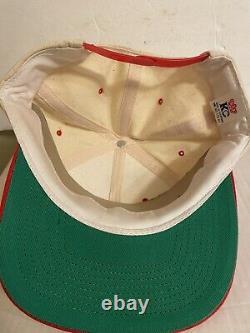 VTG 90s Grateful Dead Band Rare Vintage Snapback Hat Jerry Garcia Bear Sewn Red
