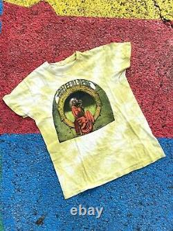 Vintage 70s Grateful Dead 1975 Blues for Allah Rare green tie dye color USA sz L